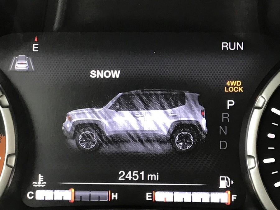 RenegadeL19-snow disp