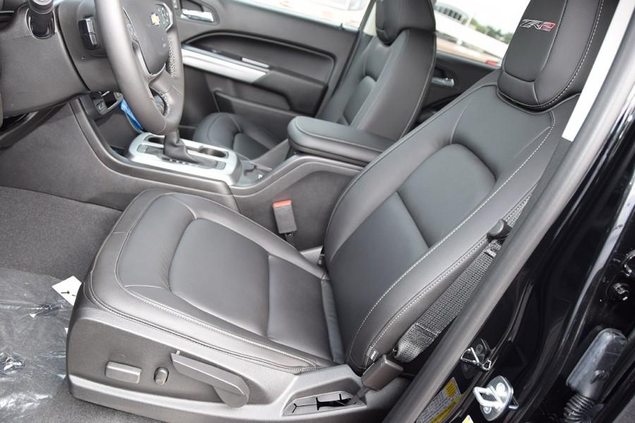 Bison19-F.Seats